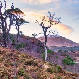 guided walks near Fort William, Scotland